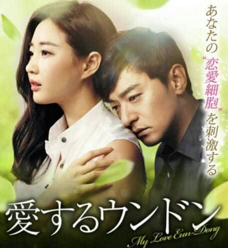 韓流・韓国ドラマ『愛するウンドン』の作品概要