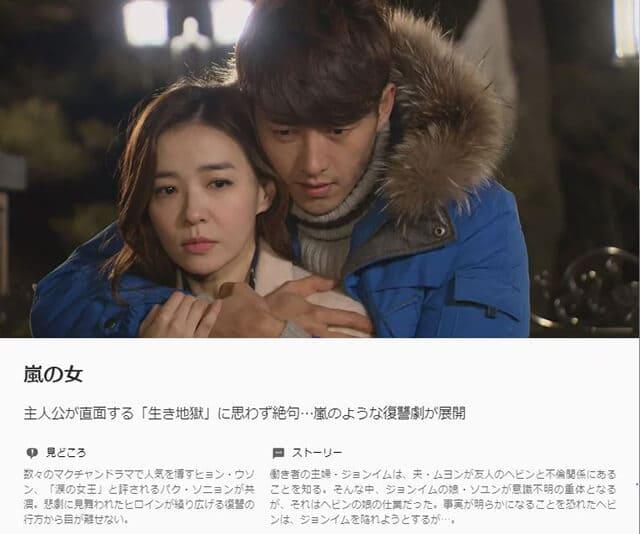 韓流・韓国ドラマ『嵐の女』の作品概要