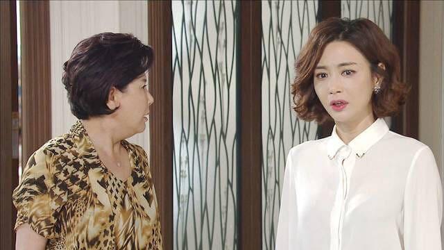 韓流・韓国ドラマ『嵐の女』の作品紹介