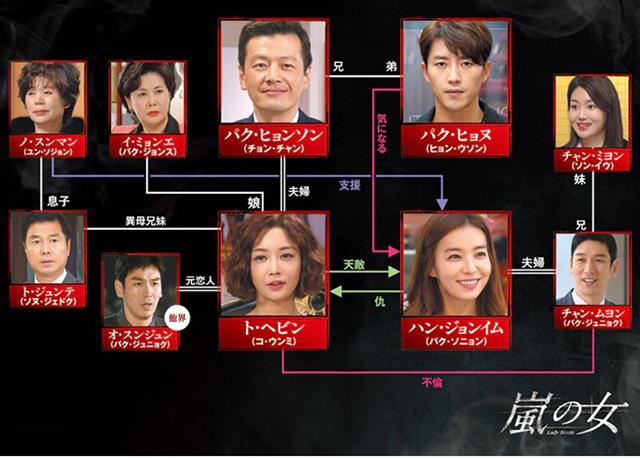 韓流・韓国ドラマ『嵐の女』の登場人物の人間関係・相関図・チャート