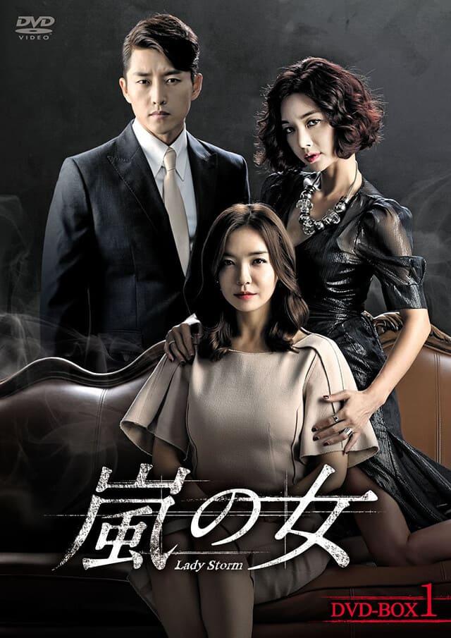 韓流・韓国ドラマ『嵐の女』のDVD&ブルーレイ発売情報