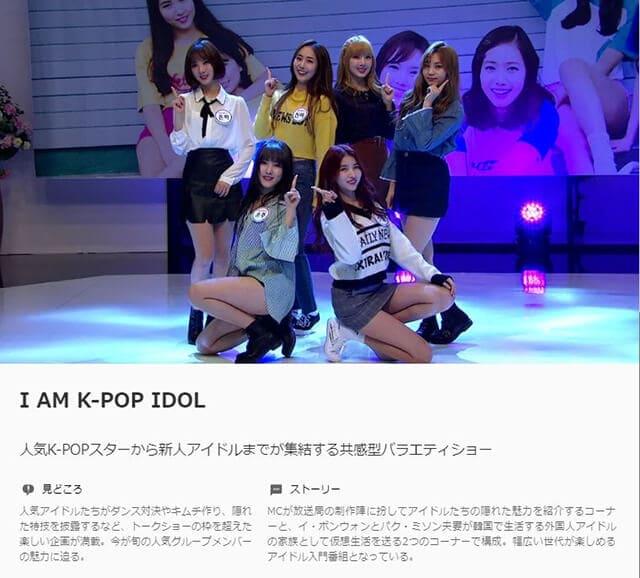 韓流・韓国ドラマ『I AM K-POP IDOL』の作品概要