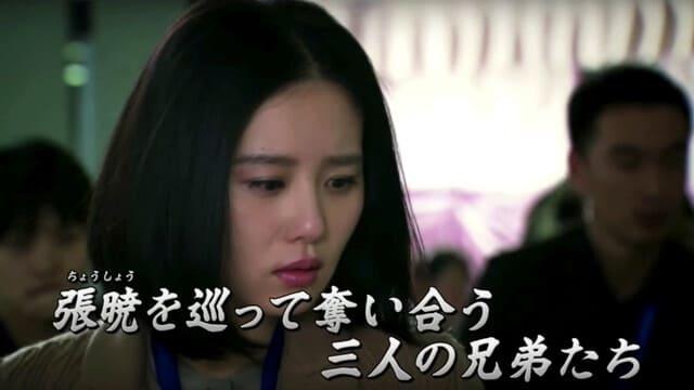 韓流・韓国ドラマ『続・宮廷女官 若曦 ~輪廻の恋~』のあらすじ(全話)※ネタバレ有り