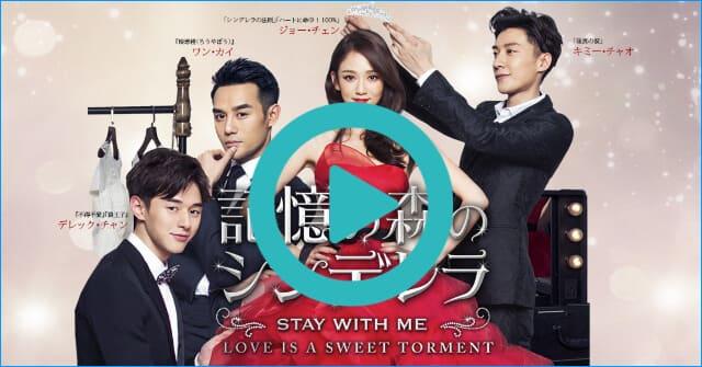 韓流・韓国ドラマ『記憶の森のシンデレラ~STAY WITH ME~』を見る