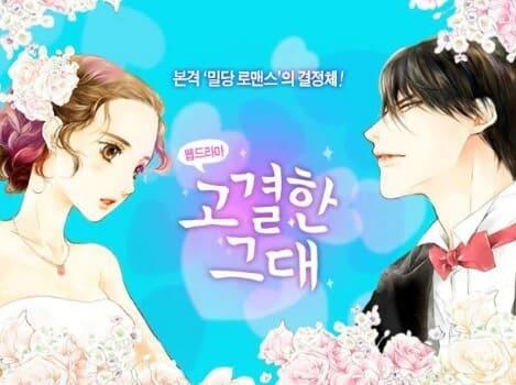 韓流・韓国ドラマ『高潔な君』の作品紹介