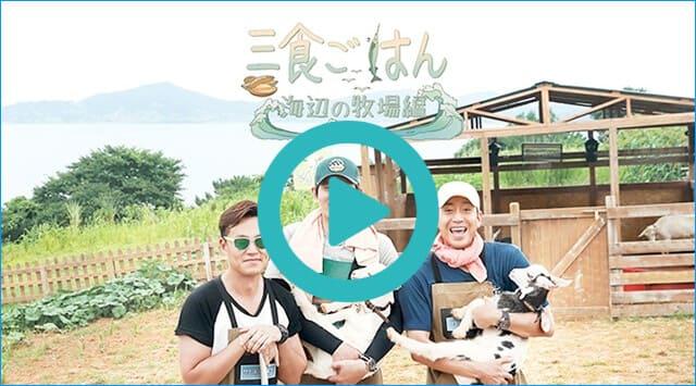 韓国ドラマ『三食ごはん 海辺の牧場編』を見る