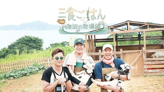 韓流・韓国ドラマ『三食ごはん 海辺の牧場編』の作品紹介