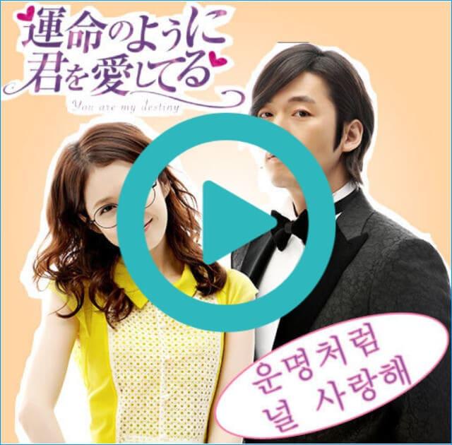 韓国ドラマ『運命のように君を愛してる』を見る
