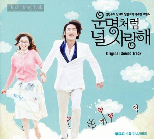 韓流・韓国ドラマ『運命のように君を愛してる』の作品紹介